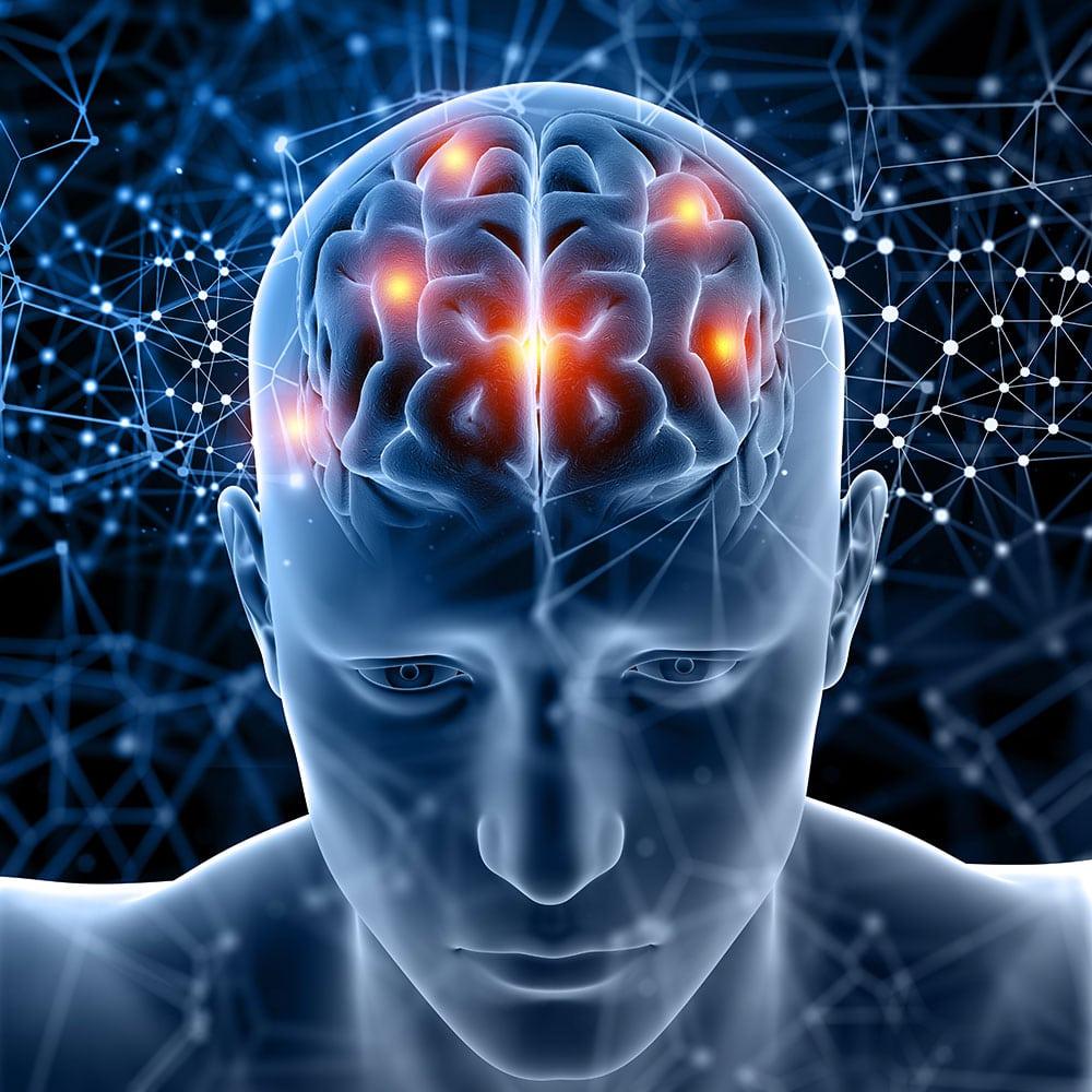 cerebro saudavel